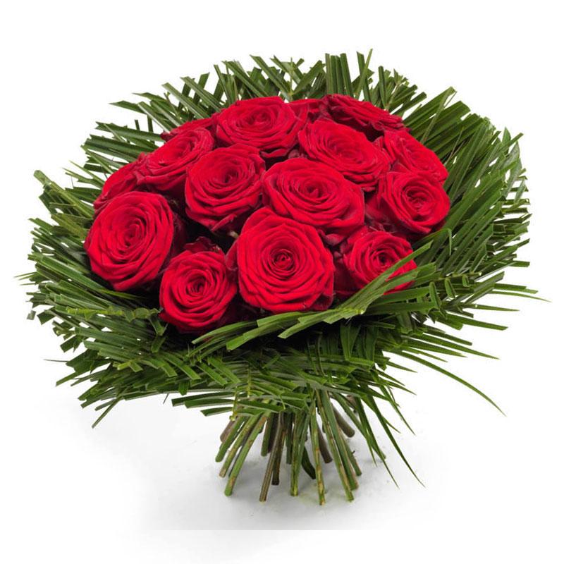 Совершенство красных роз