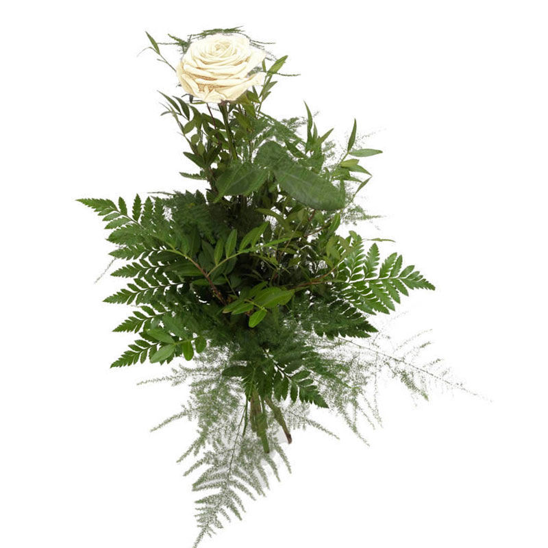 1 белая роза