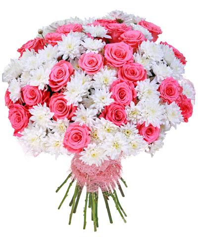 Розы хризантемы