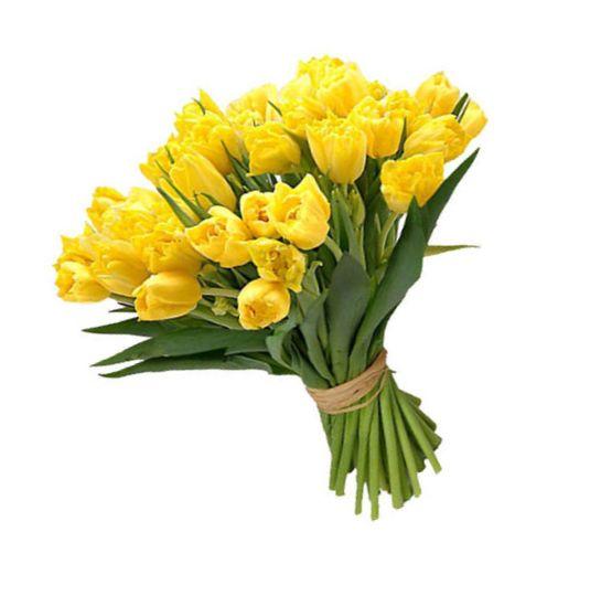 29 солнечных тюльпана