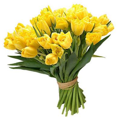 29 солнечных тюльпанов