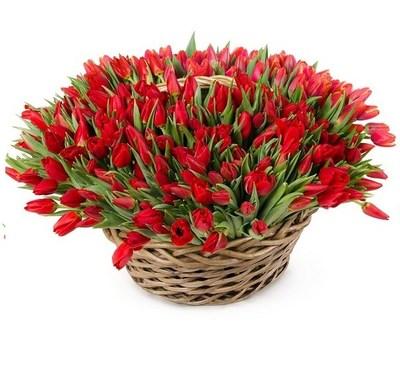 Корзина 101 тюльпан