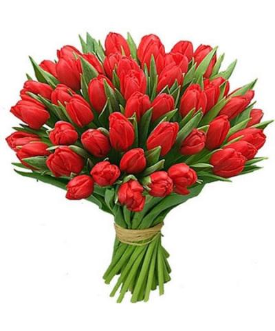 45 красных тюльпанов
