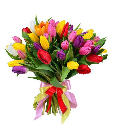 45 цветных тюльпанов