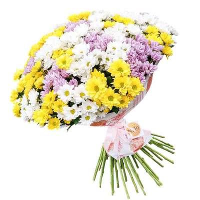 Букет разноцветных хризантем
