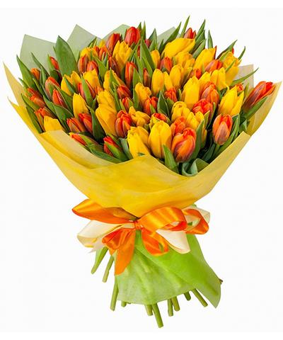 75 желто-красных тюльпанов