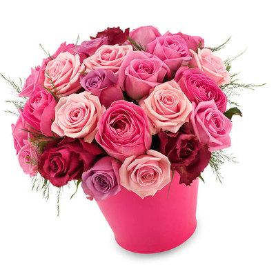 Розовые розы изобилия