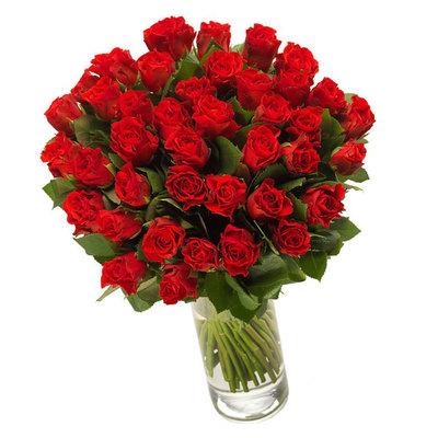 Небеса из красных роз