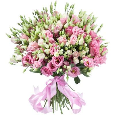 Бело-розовые эустомы