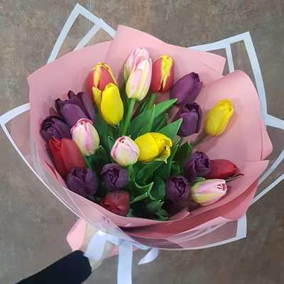 Осенние тюльпаны