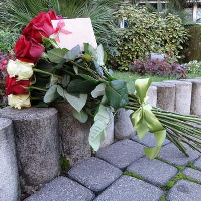 Розы голландские