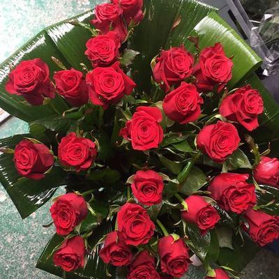 Розы в аспидистре