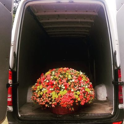 Огромная корзина роз