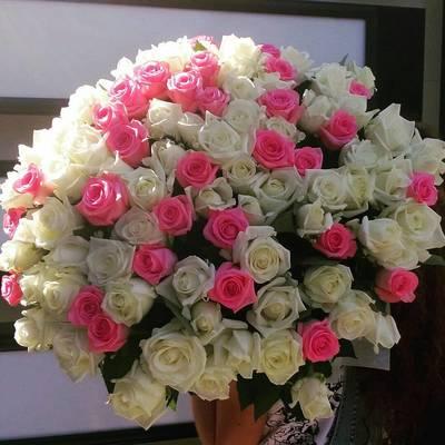 Нежный шар 101 роза
