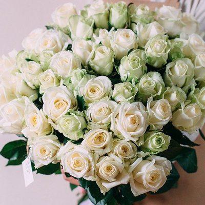 Бело-зелёные розы