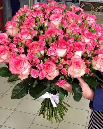 Розы Джумилия и кустовая