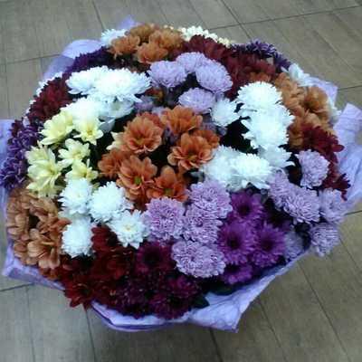 Букет интересных хризантем