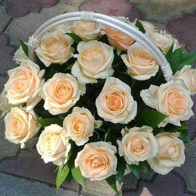 Корзинка кремовых роз